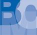 Boulden Insights logo